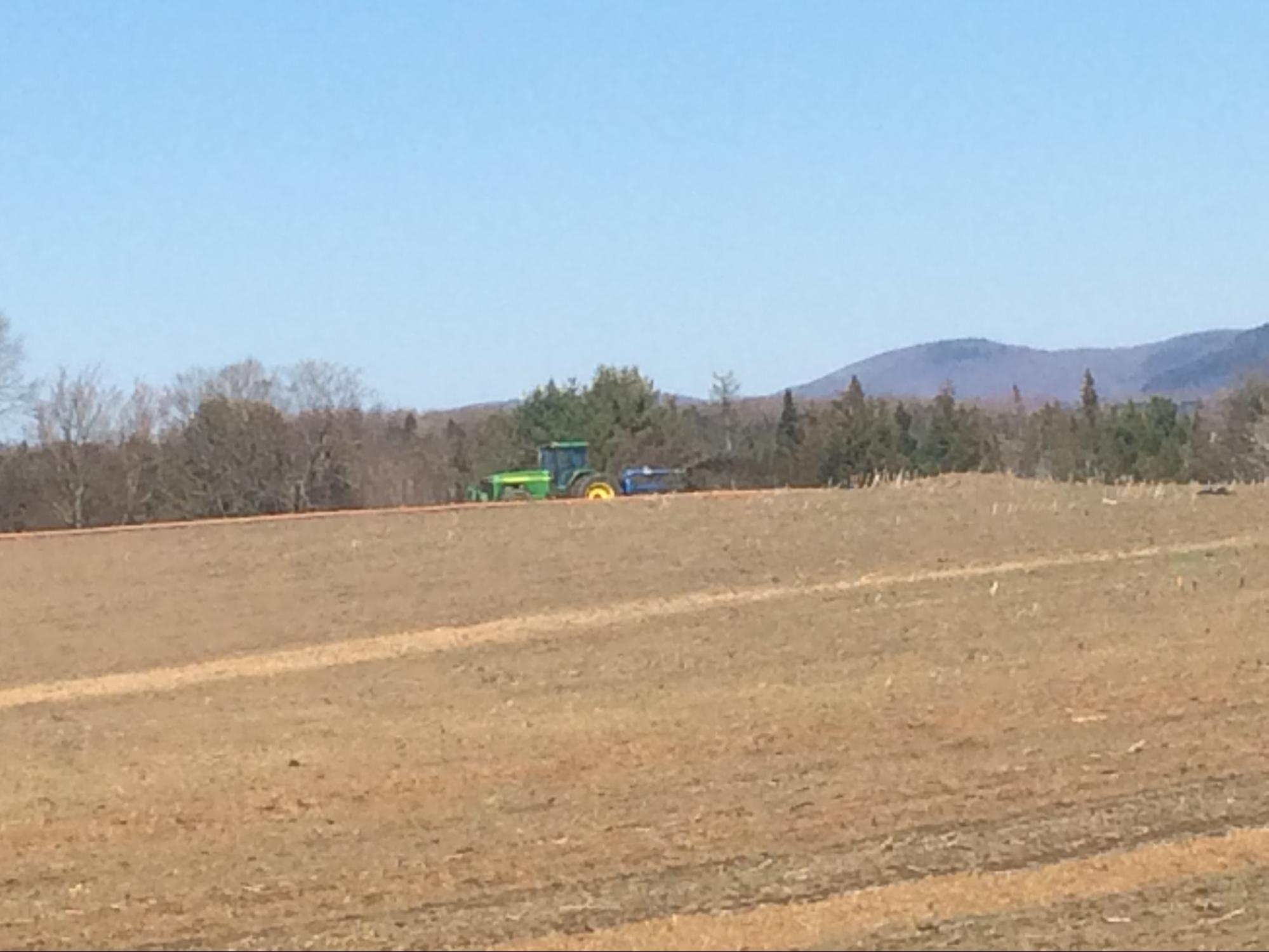 Manure is spread through a dragline system on a corn field